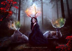 Deer by jiajenn