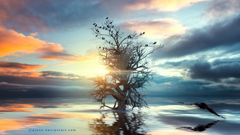In the lake by jiajenn