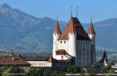 Schloss Thun / Castle of Thun