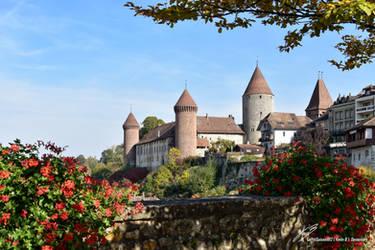 Chateau et Geraniums