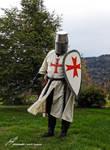Le Templier / The Templar