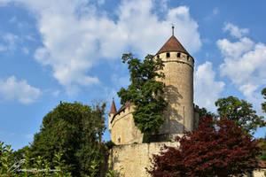 Le Donjon Du Chateau de Lucens