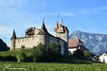 Chateau d'Aigle depuis les vignes