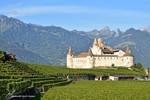 Chateau d'Aigle 4