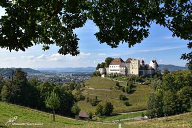 Lenzburg Landschaft