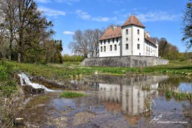 Chateau d'Allaman reflexion dans l'Etang 2 by LePtitSuisse1912