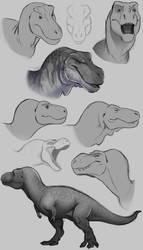 Stylized Rexes by SeaSaltShrimp