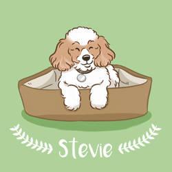 Stevie-final by rodrigopims