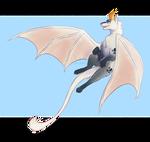Tora- flying collab