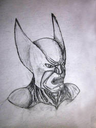 Wolverine by mirrorrrrr