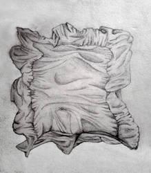 Cushion by mirrorrrrr