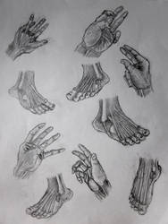 Feet and hands by mirrorrrrr