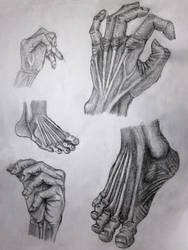 More feet and hands by mirrorrrrr