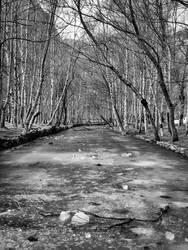 Frozen River - bw by NunoPires