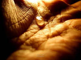 Teardrop Skin by NunoPires