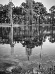 Lake Reflections - bw by NunoPires