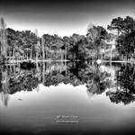Water Reflections - bw
