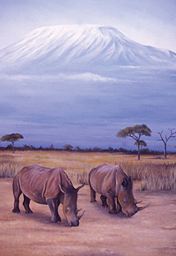 """White Rhinos"" by demolitionwoman"