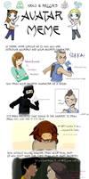 Avatar Meme by ykansaki