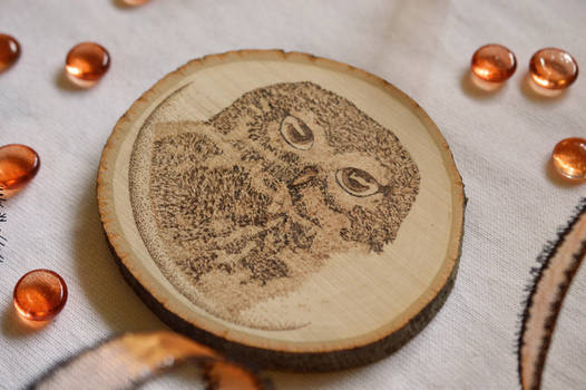 OWL AND MOON WOOD BURNING