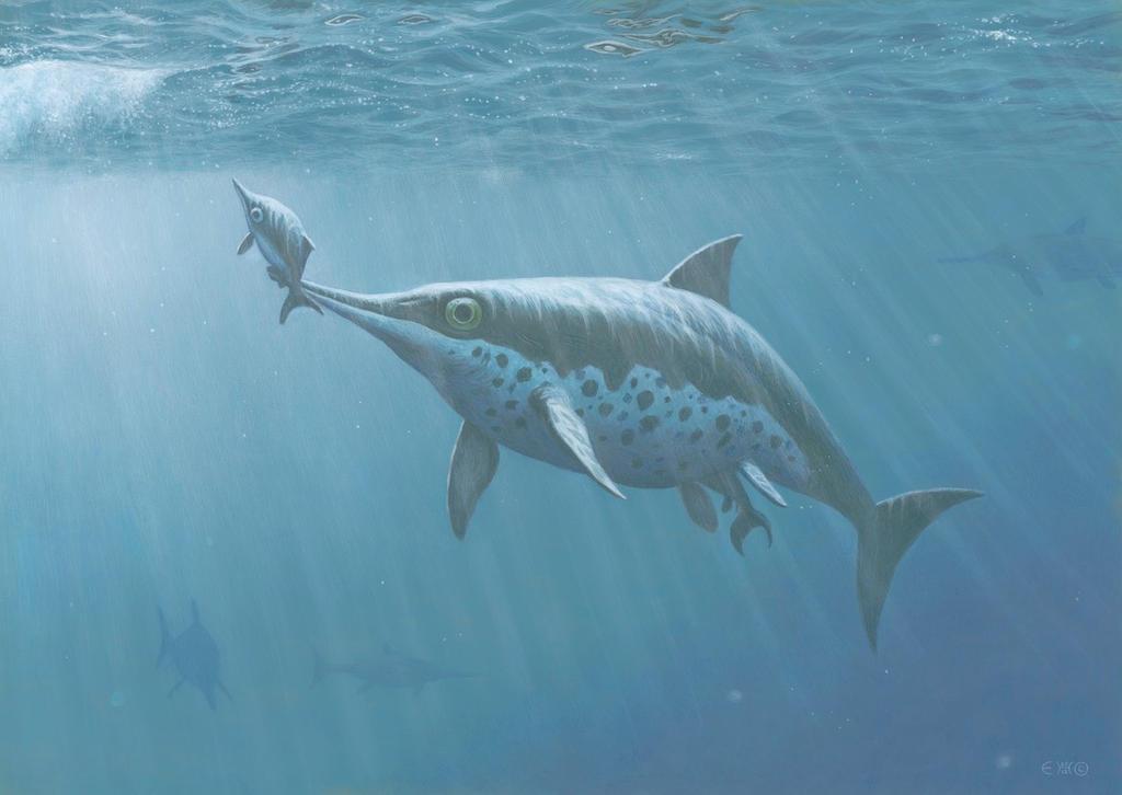 Ichthyosaur Birth by EsthervanHulsen