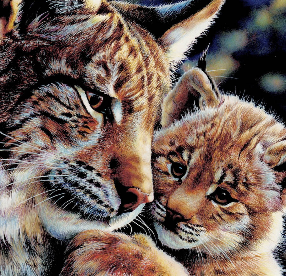 European Lynx by EsthervanHulsen