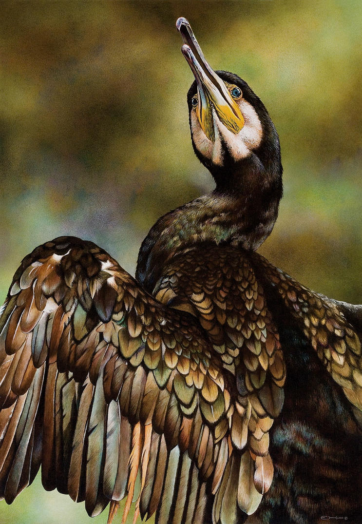 Great Cormorant Painting by EsthervanHulsen