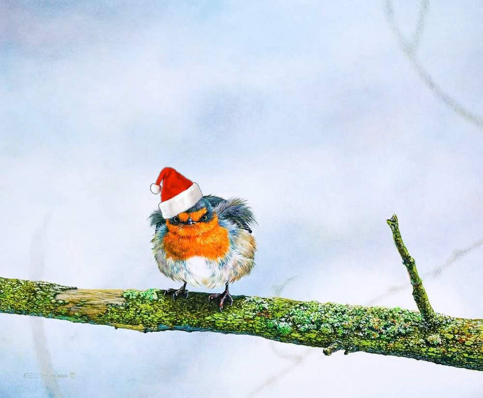 Happy Holidays! by EsthervanHulsen