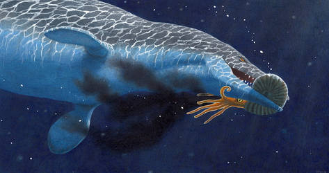Mosasaurus with Ammonite by EsthervanHulsen