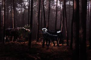 Beauty In The Wild by CraftySalko