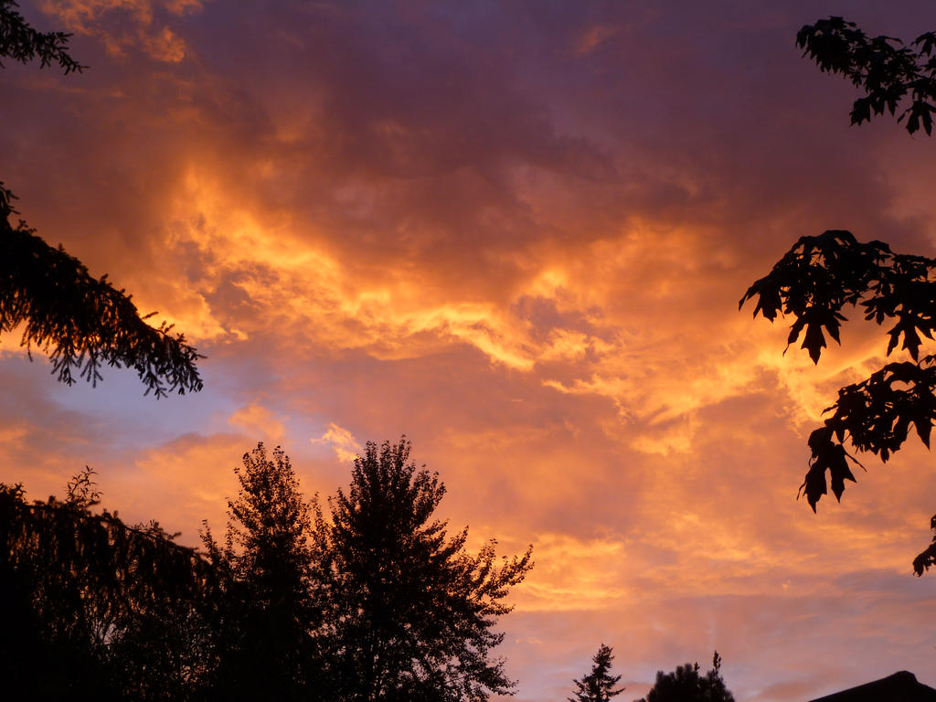 Sunset by DompteurLoup