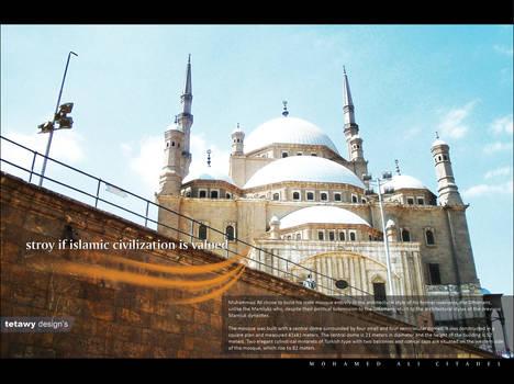 mohamed ali citadel