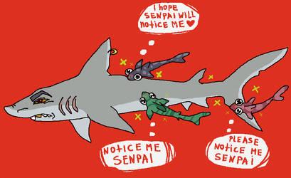 Notice me senpai