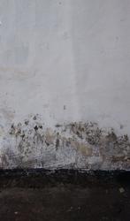 Wall by kernill