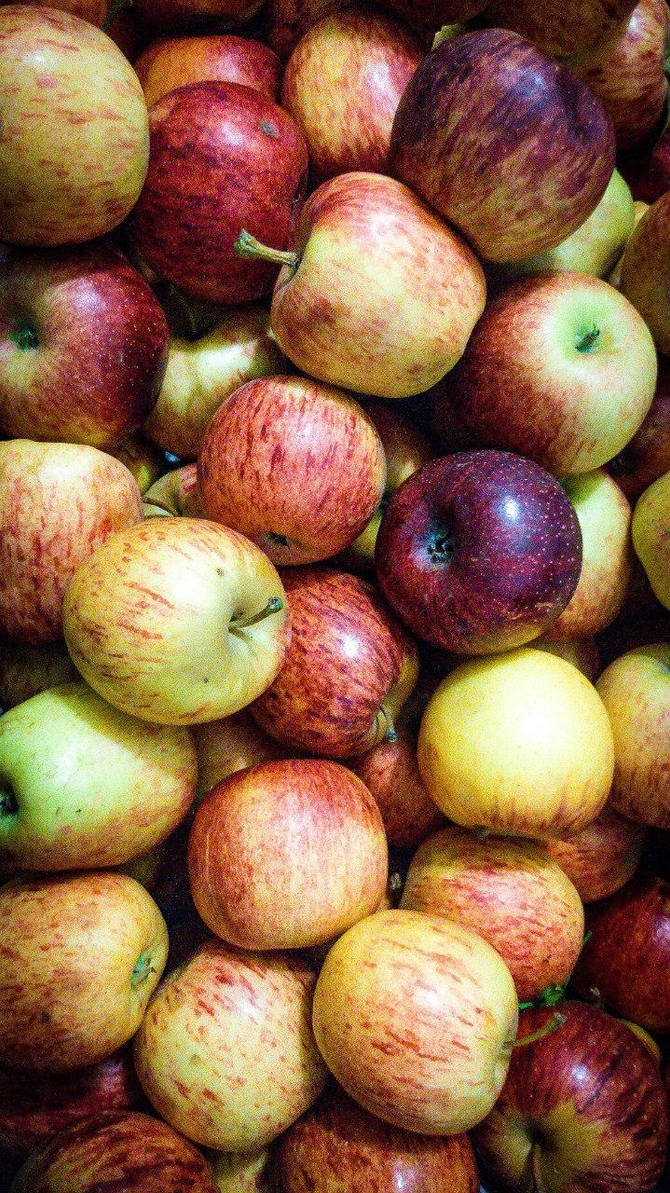 apples by kernill
