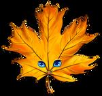 be a leaf