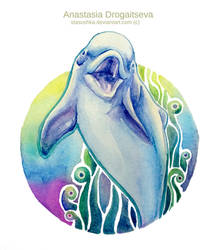 Dolphin Song by Stasushka