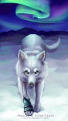 The Wolf by Stasushka