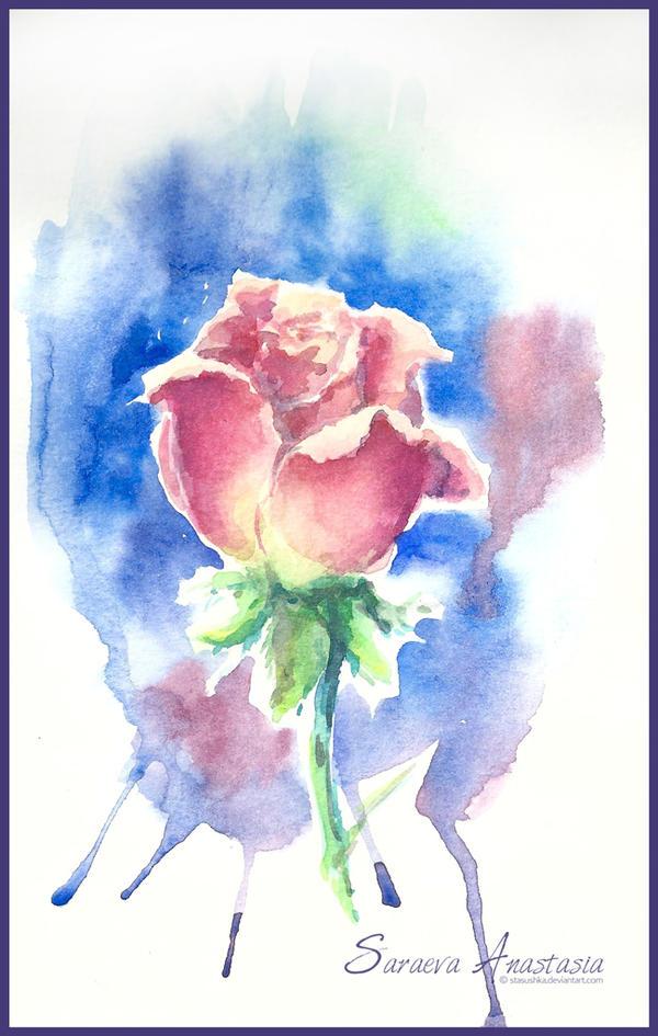 62 Rose by Stasushka