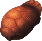 Giant Shell by TarkeeTales