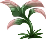 Mock Sickle Herb by TarkeeTales