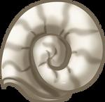Mollusk Shell by TarkeeTales