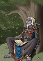 Sleeping Druid by Catilus
