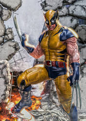 The Wolverine by supersolidusnake