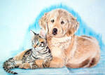 retriever with cat