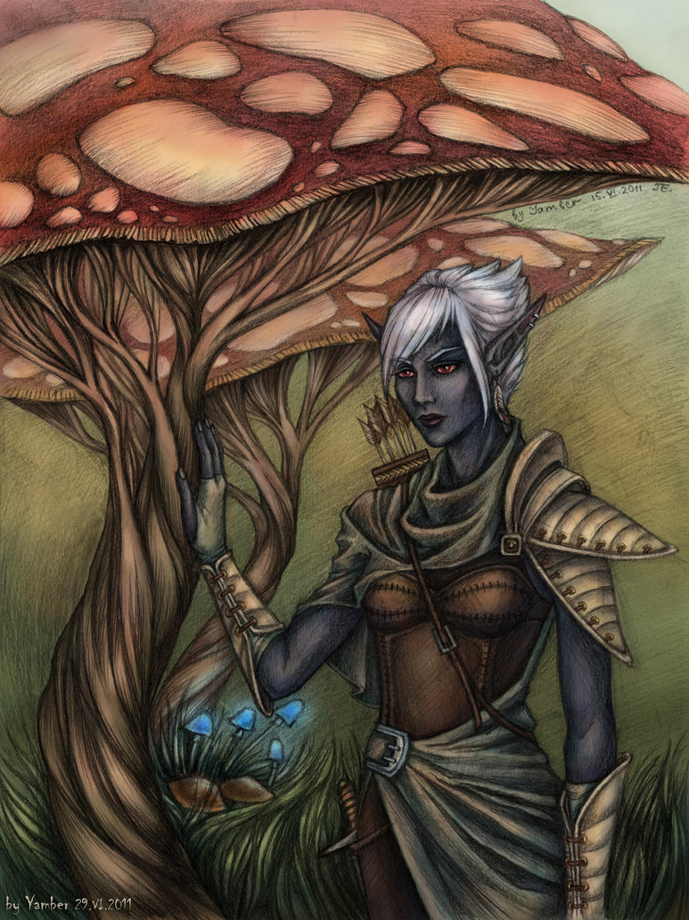 Elf and a tree-fungus in color by Yamber