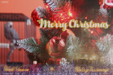Merry Christmas by bojar