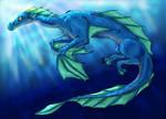 Water Drake
