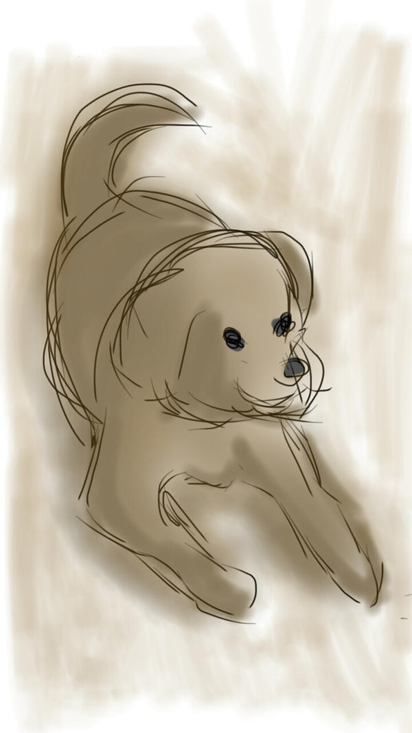 Dog by ClA-oh