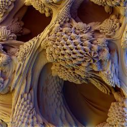 Honeycomb Heaven by dspwhite